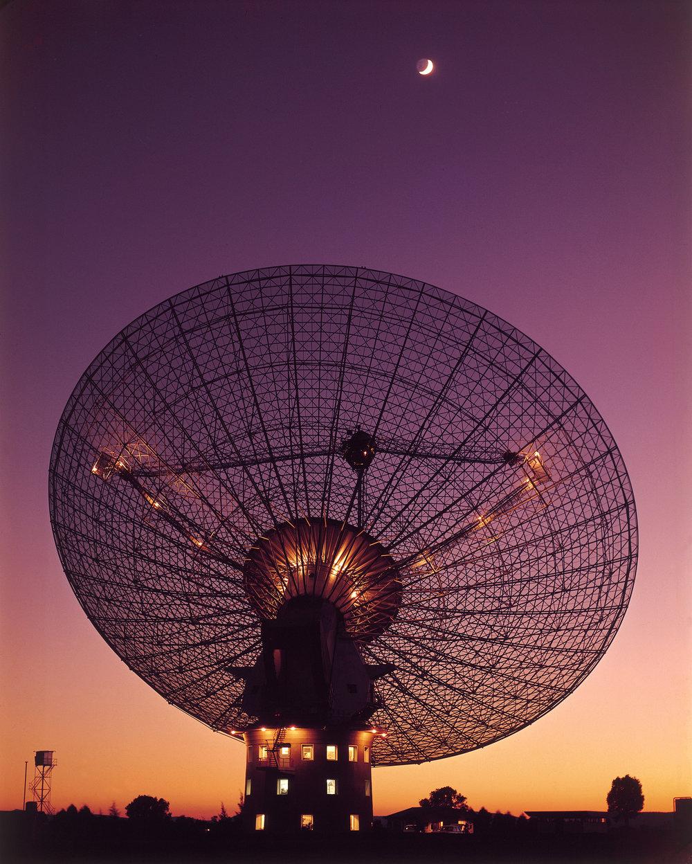 Image Credit:  WikimediaCommons/CSIRO