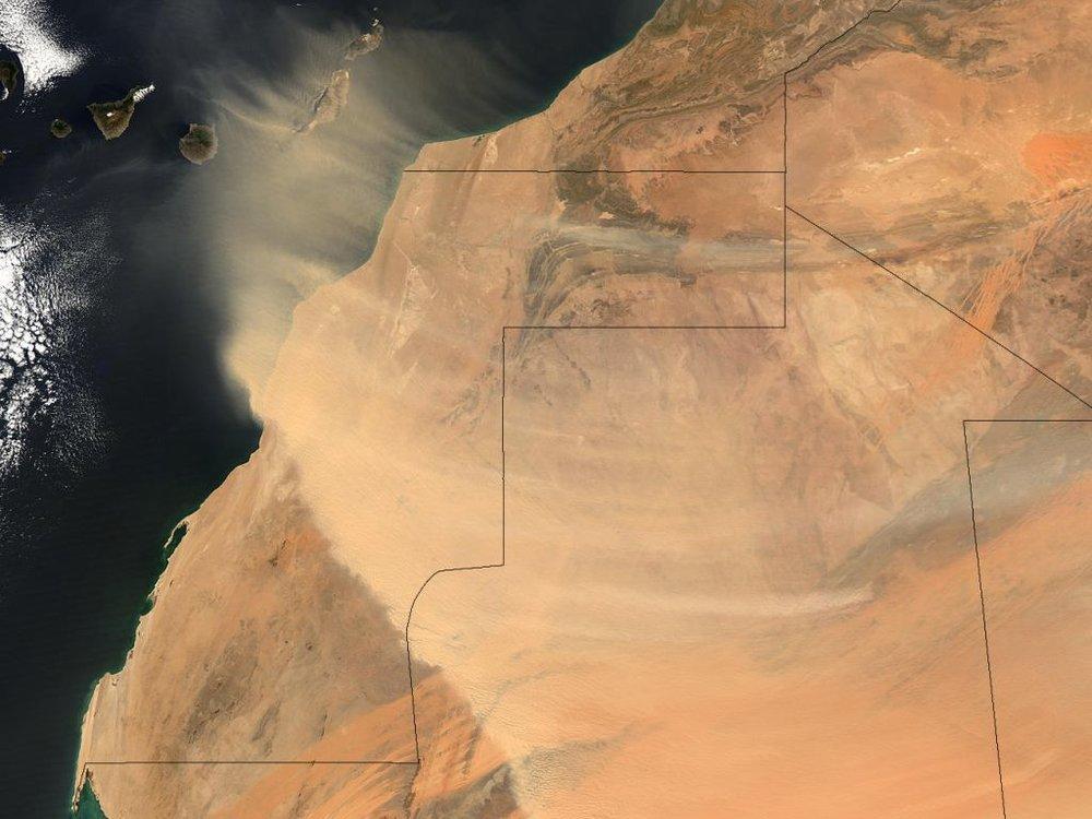Dusty. - Image Credit:Western Sahara/Flickr,CC BY-SA