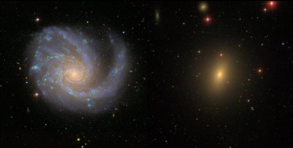 A spiral galaxy ablaze in the blue light of young stars from ongoing star formation (left) and an elliptical galaxy bathed in the red light of old stars (right). - Image Credit: Sloan Digital Sky Survey, CC BY-NC.
