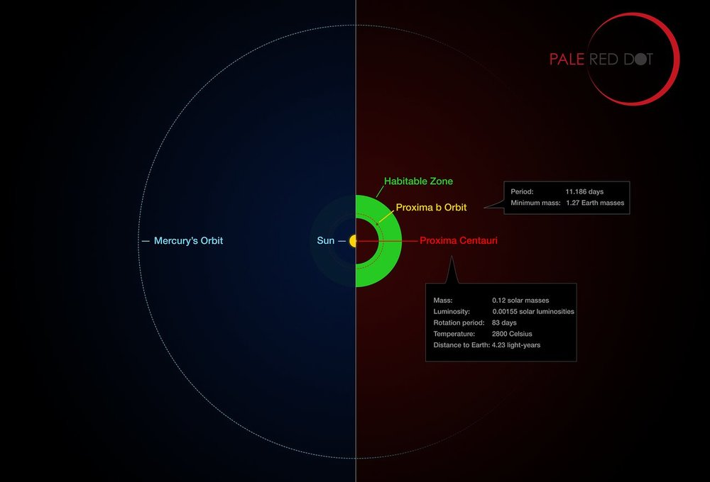 This infographic compares the orbit of the planet around Proxima Centauri (Proxima b) with the same region of the Solar System. Proxima Centauri is smaller and cooler than the Sun and the planet orbits much closer to its star than Mercury. As a result it lies well within the habitable zone, where liquid water can exist on the planet's surface. - Image Credit: ESO/M. Kornmesser/G. Coleman
