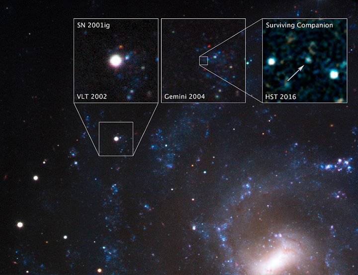 Hubble image of the supernova SN 2001ig, which indicated the presence of a companion. - Image Credits: NASA, ESA, S. Ryder (Australian Astronomical Observatory), and O. Fox (STScI)