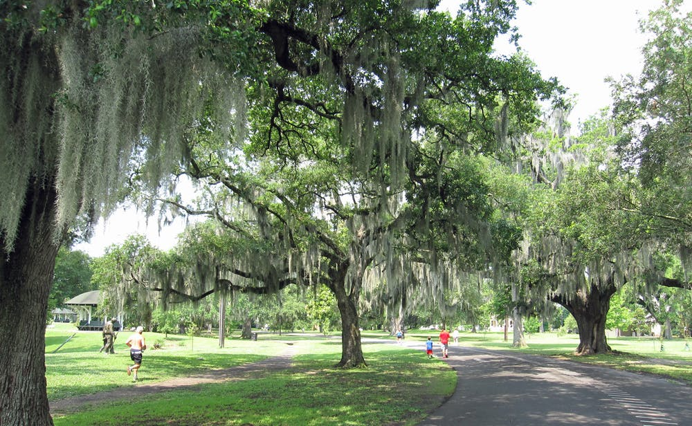 Spending time in city parks like Audubon Park in New Orleans provides some of the same benefits as time in wilderness areas, including reduced stress levels and increased energy levels. - Image Credit:  InSapphoWeTrust ,  CC BY-SA