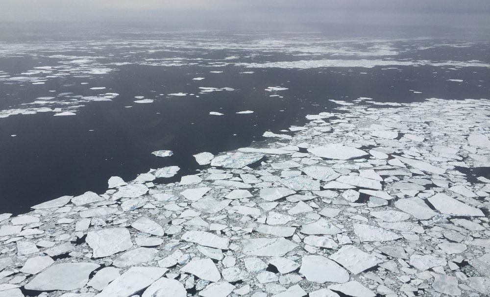 Sea ice responds to changes in winds and ocean currents, sometimes with origins thousands of kilometers away.- Image Credit:  NASA/Nathan Kurtz