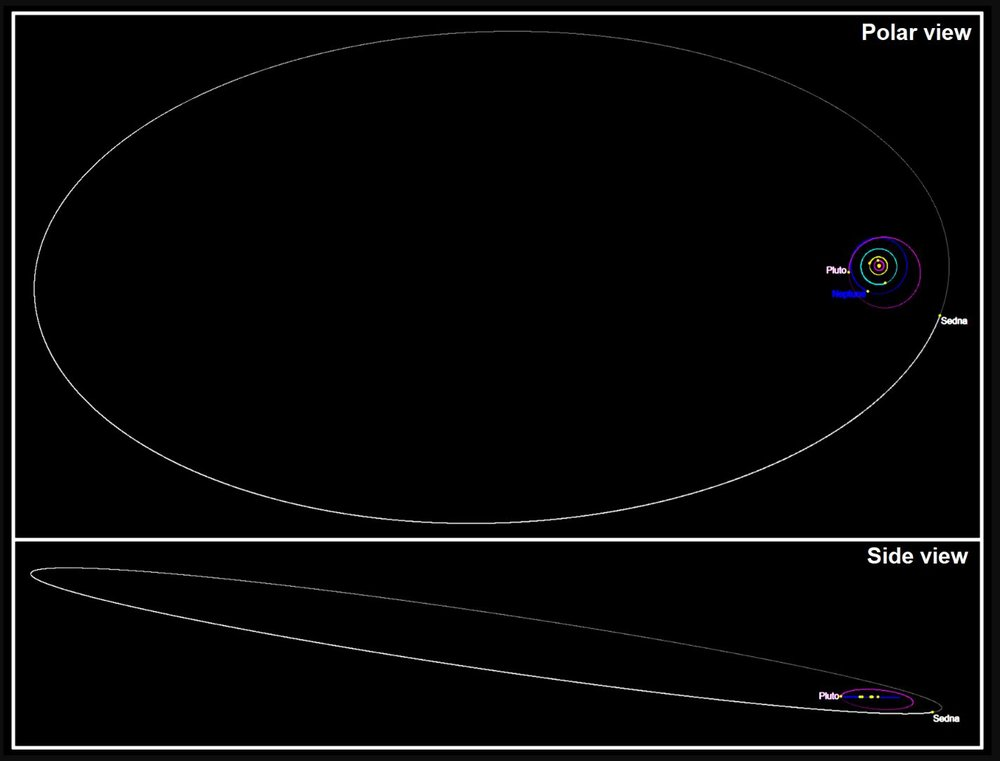 The orbit of Sedna set against the orbits of outer Solar System objects (top and side views, Pluto's orbit is purple, Neptune's is blue). - Image Credit:  Tomruen via Wikimedia Commons