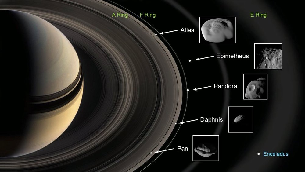 This graphic shows the ring moons inspected by NASA's Cassini spacecraft in super-close flybys. The rings and moons depicted are not to scale. - Image Credits: NASA/JPL-Caltech