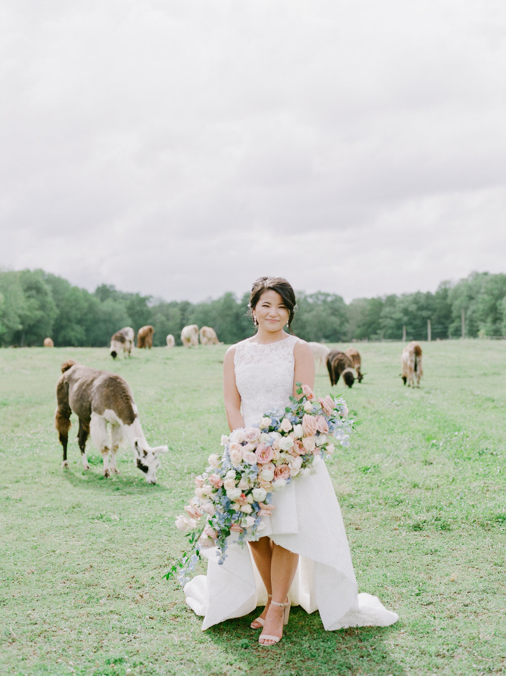 nj_alpaca-farm_wedding_inspiration-70.jpg