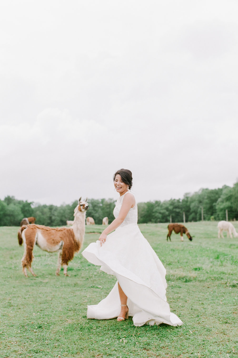 nj_alpaca-farm_wedding_inspiration-78.jpg