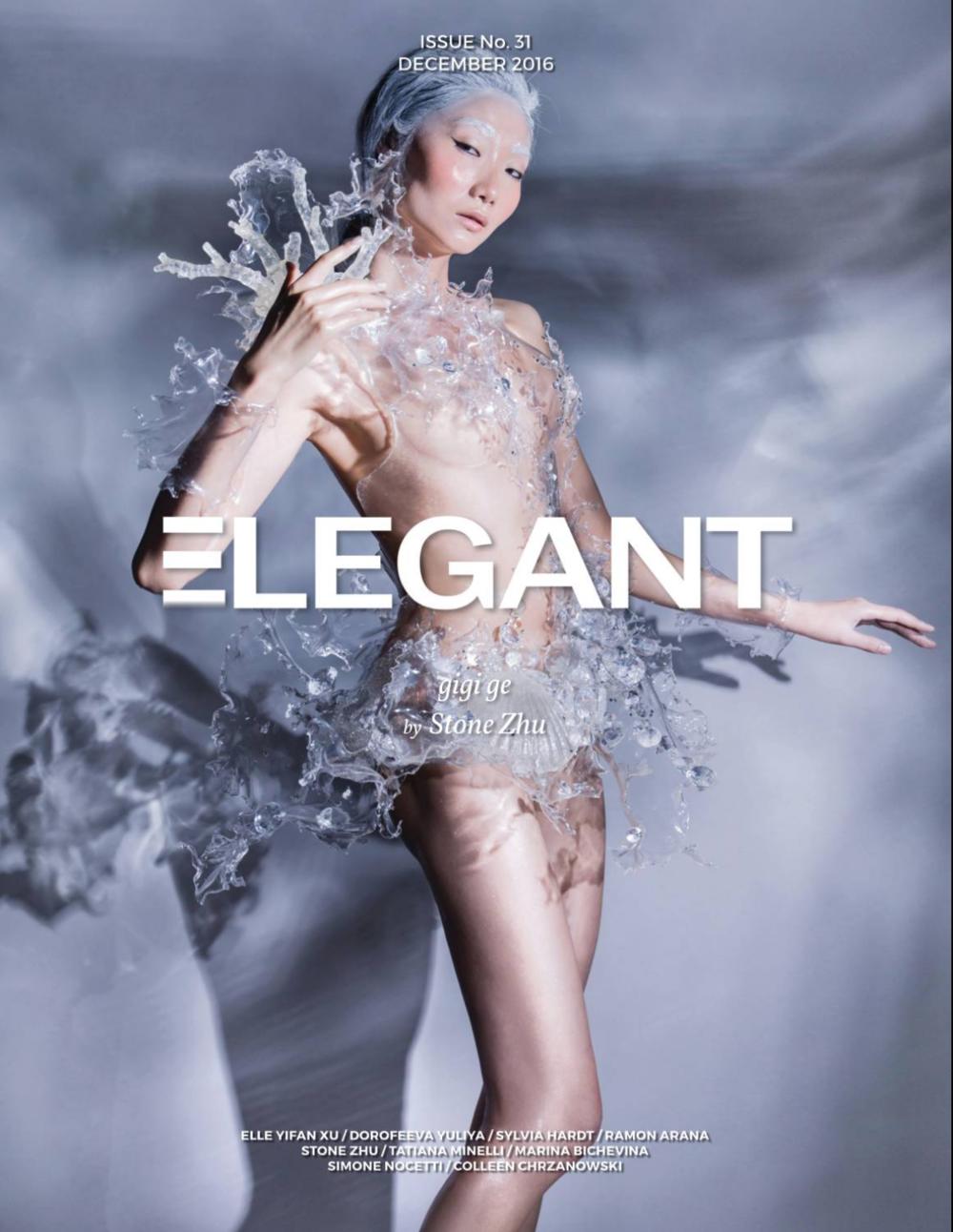 Elegant magazine cover Dec 2016