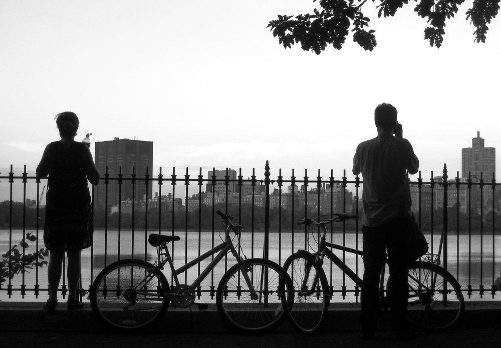 2010-New York City bike.jpg