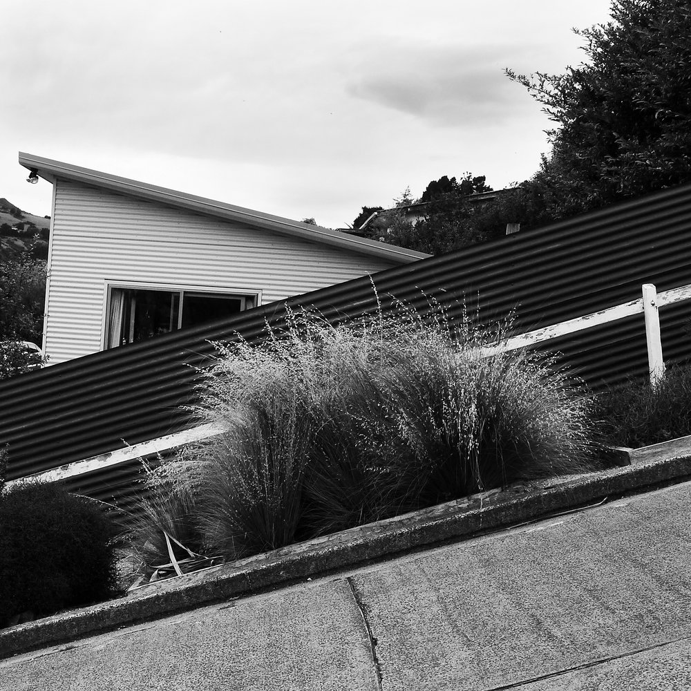 35% Incline, Baldwin St, New Zealand,2016