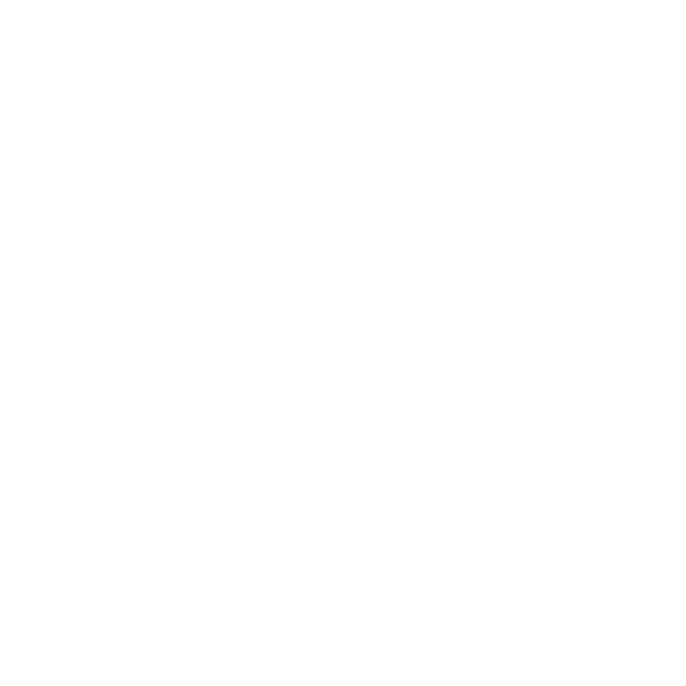 The Rude Mechanicals