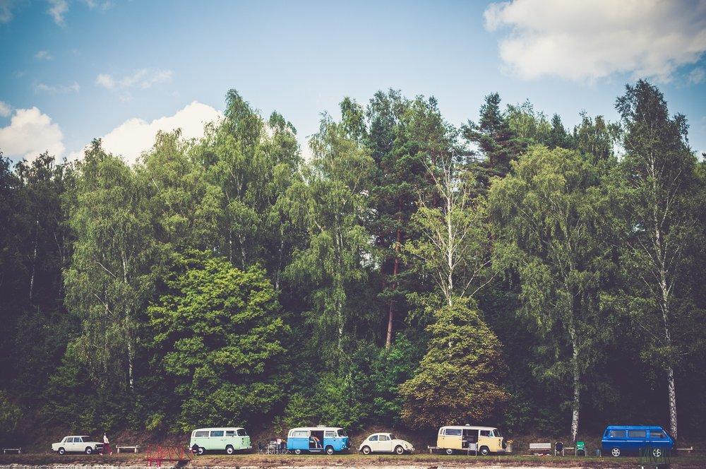 trees-1246045_1920.jpg