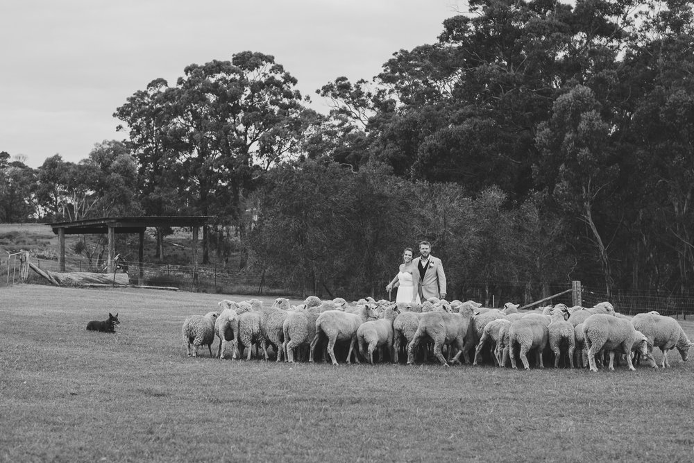 Michelle & Ben's wedding (low res)-368.jpg