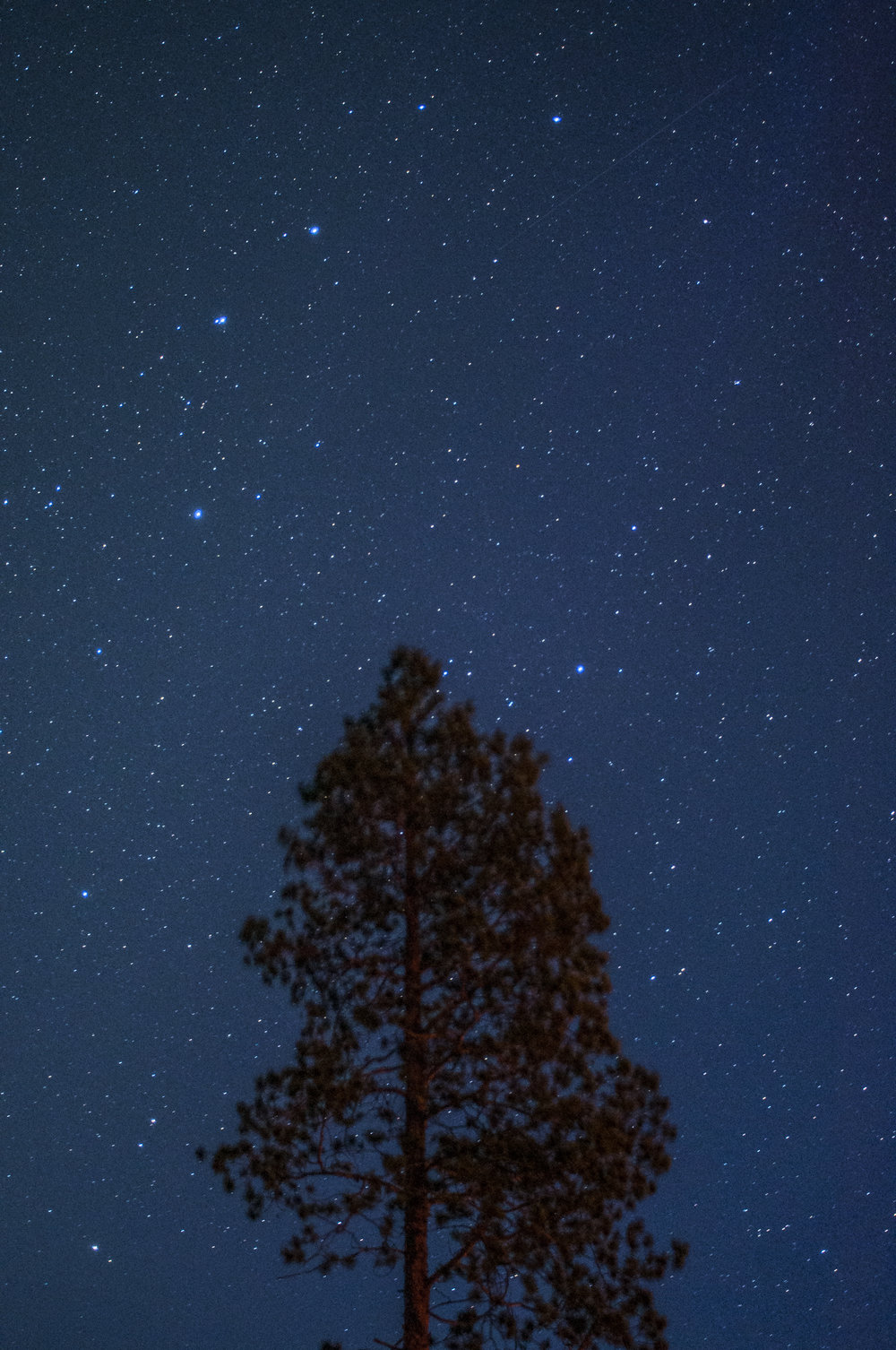 Ovi Raishiin i stjerneskinn