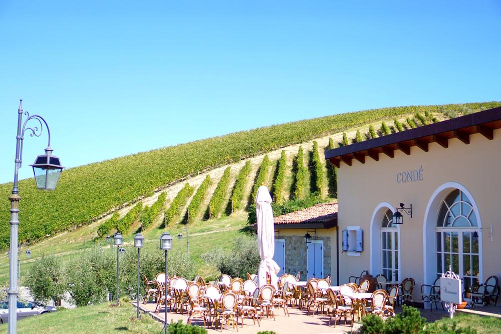 Conde Winery.jpg
