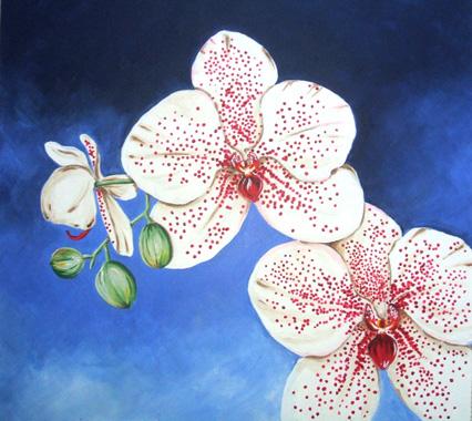 Orchids,  76x76cm £175