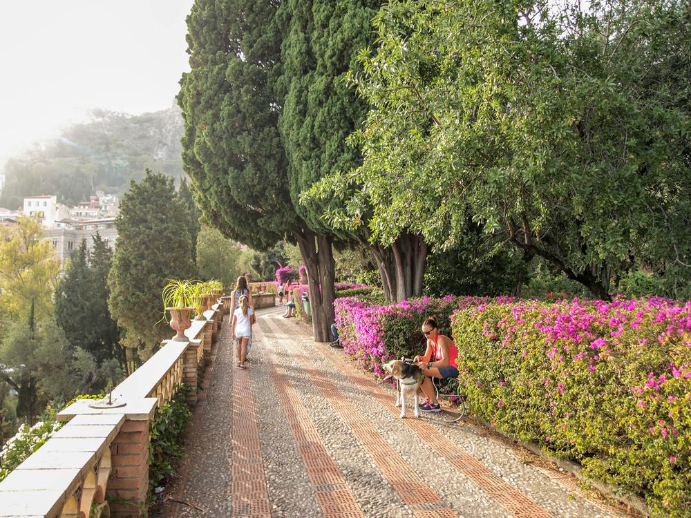 Giardino pubblico in Taormina- bougainvillea blossoms everywhere!