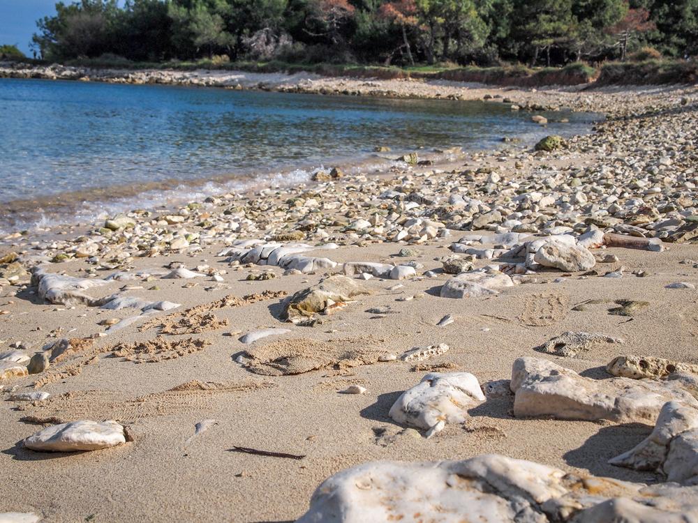 Kamenjak-Beach