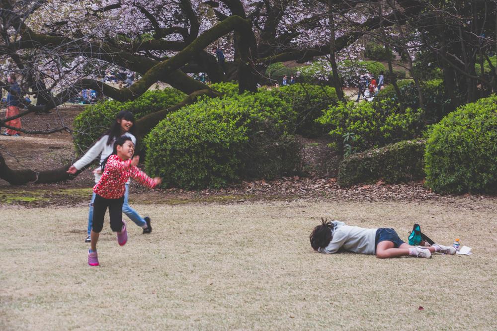 Shinjuku-park