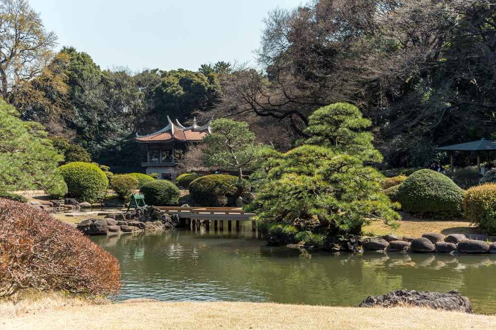 Sinjuku-national-garden