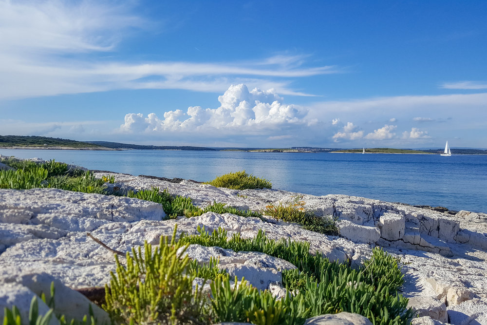 Cape Kamenjak, Istria in early summer