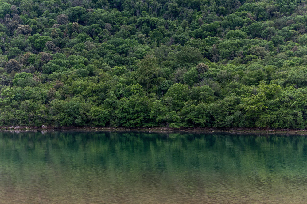 Lim-fjord