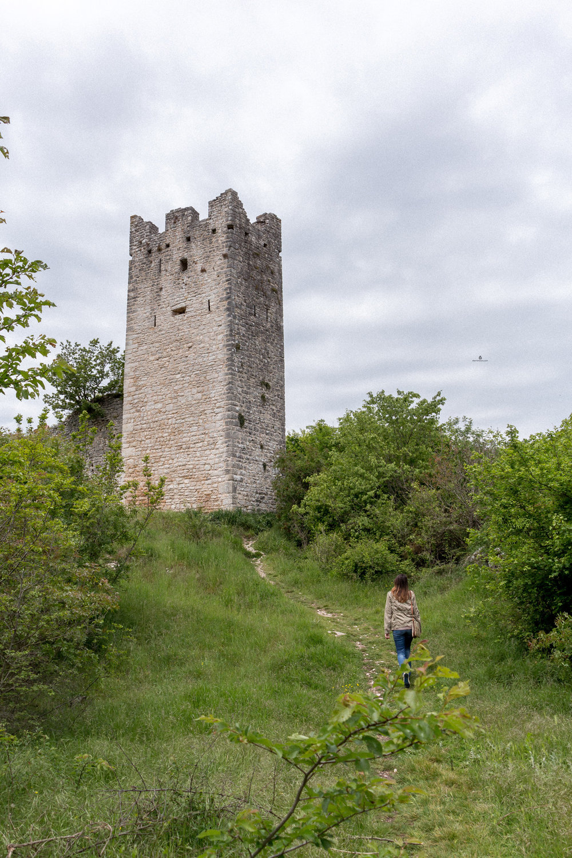 Istria-Dvigrad