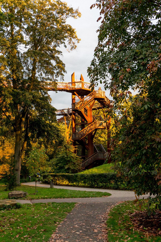 Kew-Gardens-treetop-walkway