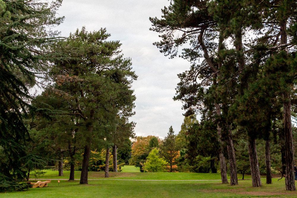 Kew-Gardens-5