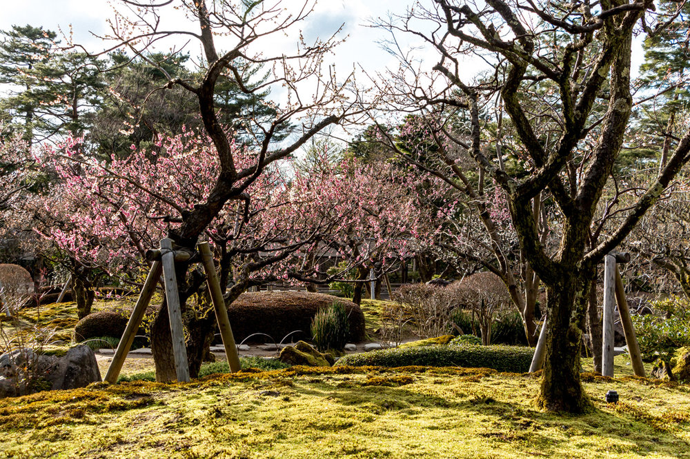 Kenroku-en-Kanazawa