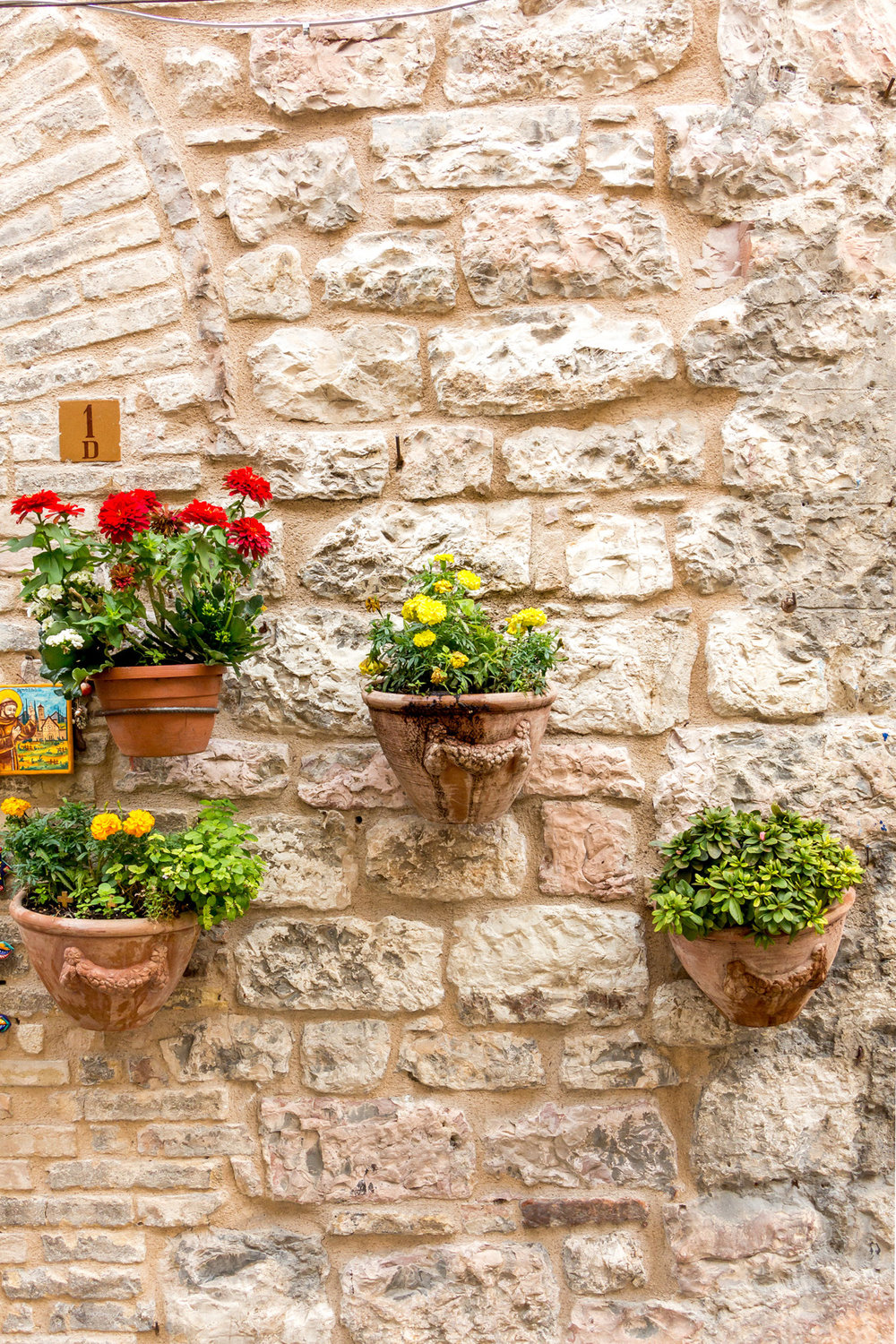 Flower pots in Assisi, Italy