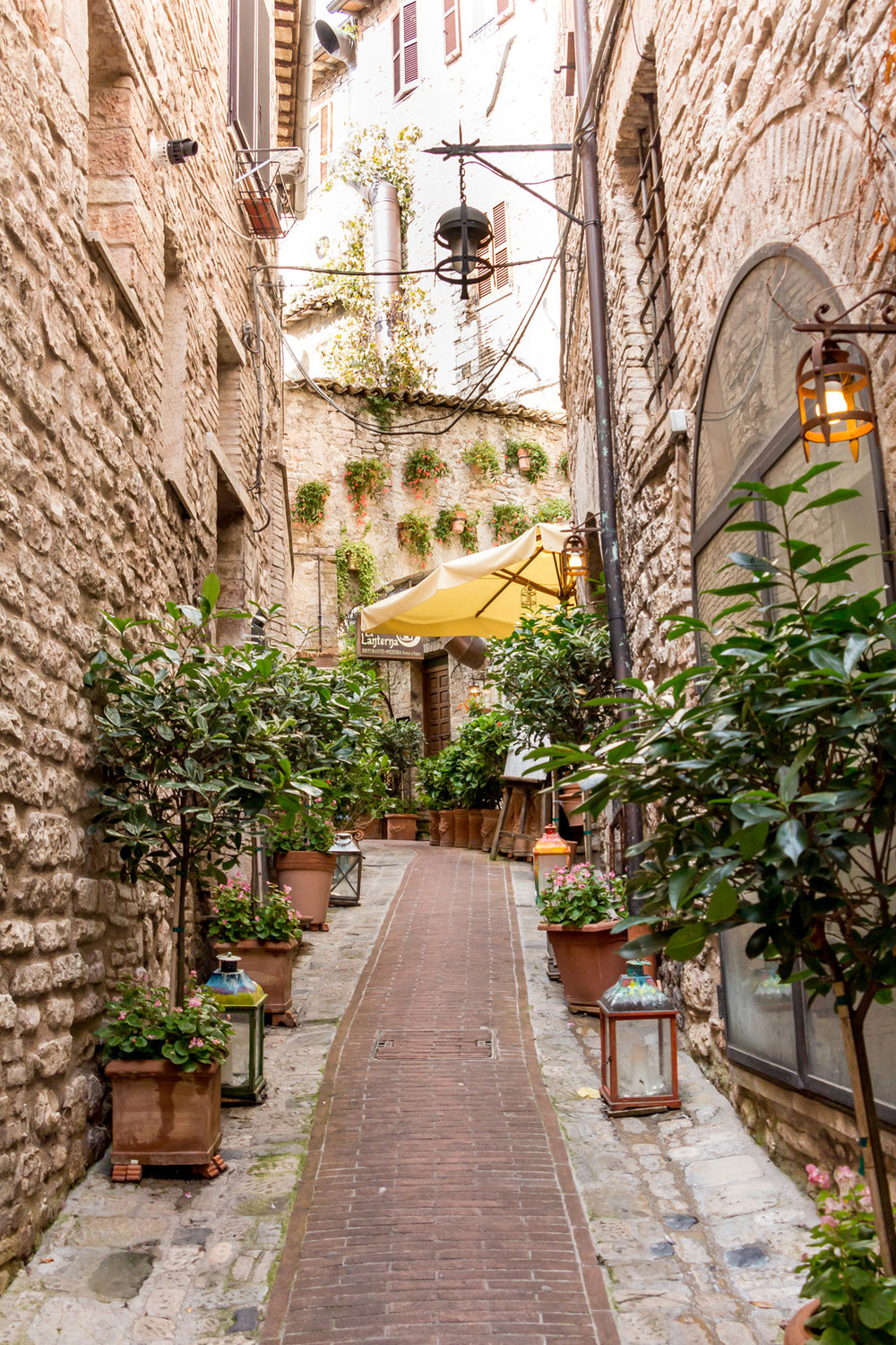 Flowery street in Assisi, Umbria