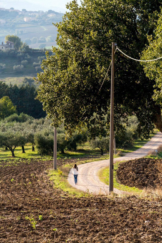 Near Todi, Italy