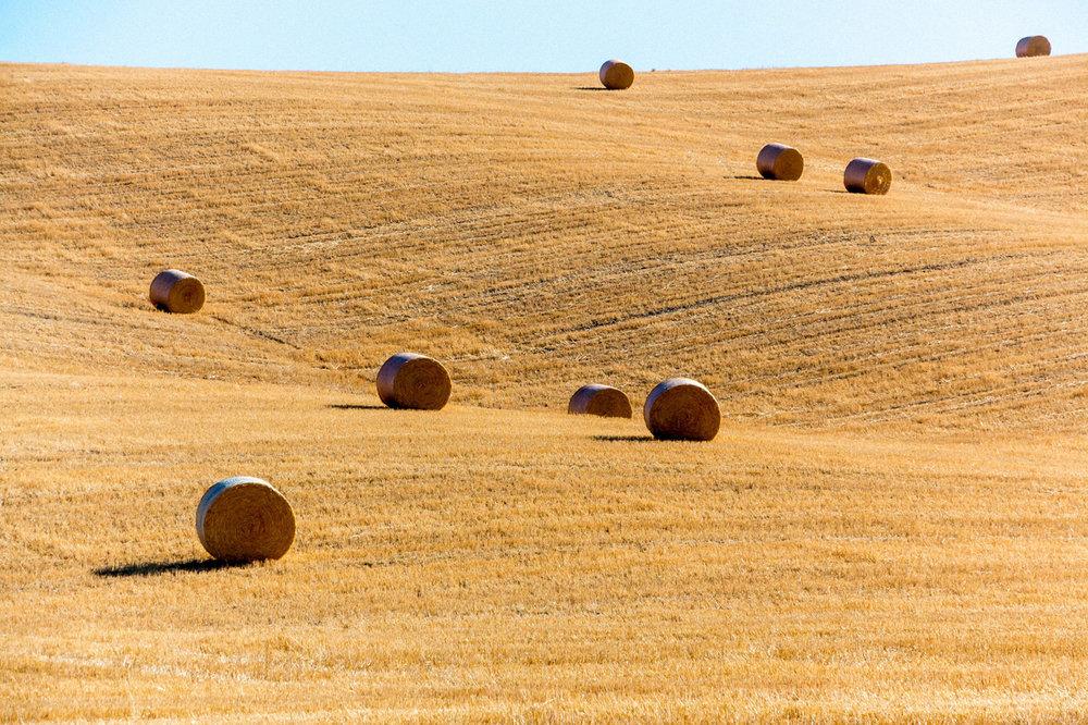 Haystacks in Tuscany