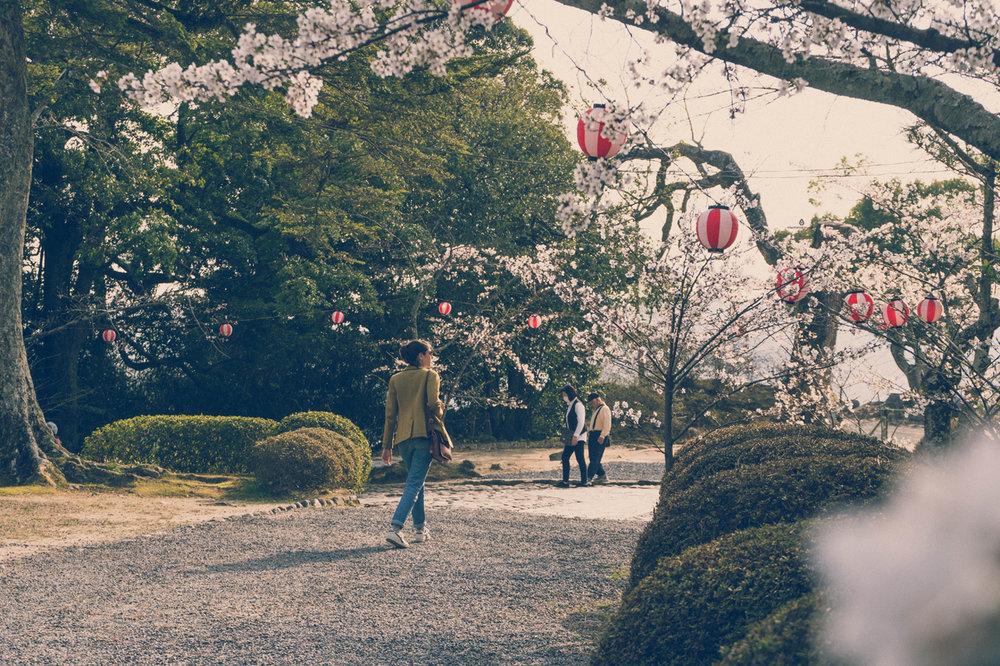 A walk in Iga Ueno Castle park
