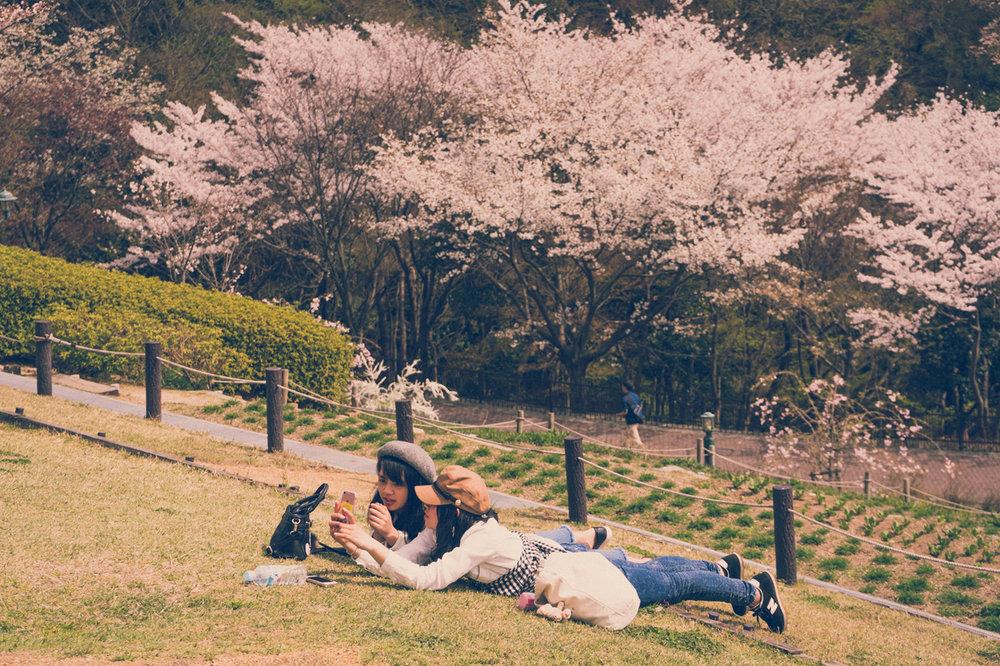Enjoying spring in Nunobiki Herb Garden, Kobe