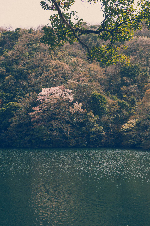 Nunobiki reservoar, Kobe, Japan