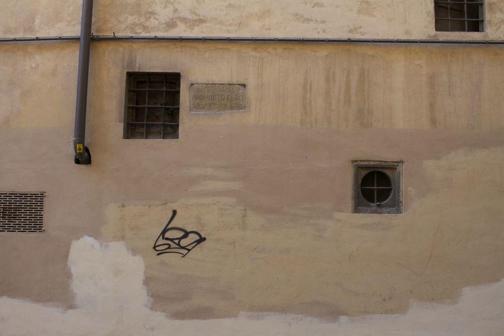 Florence12.jpg