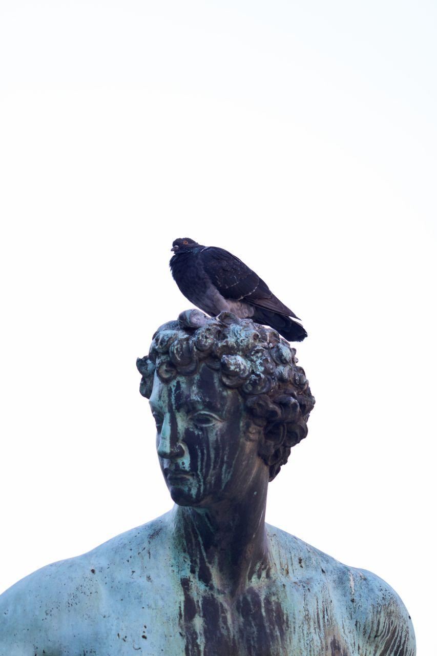 Florence28.jpg