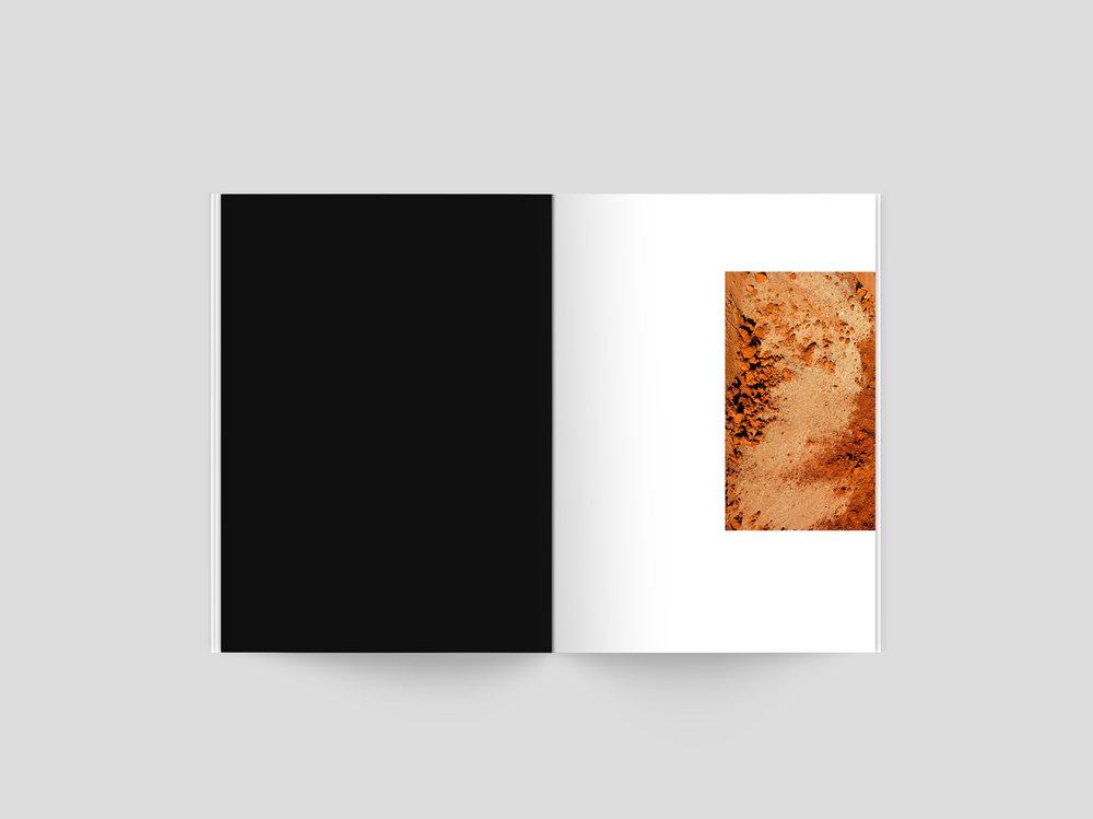 Issue1_Darrell.jpg