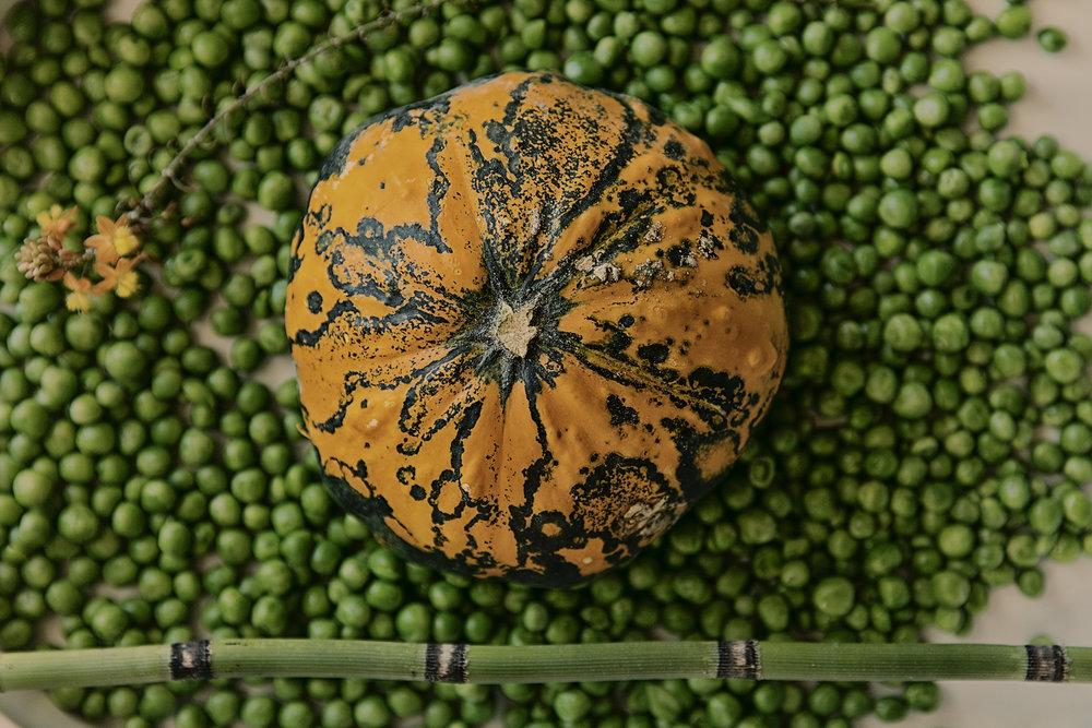 Gerard-Harten-Food-Photographer-Artists-Legends_07.jpg