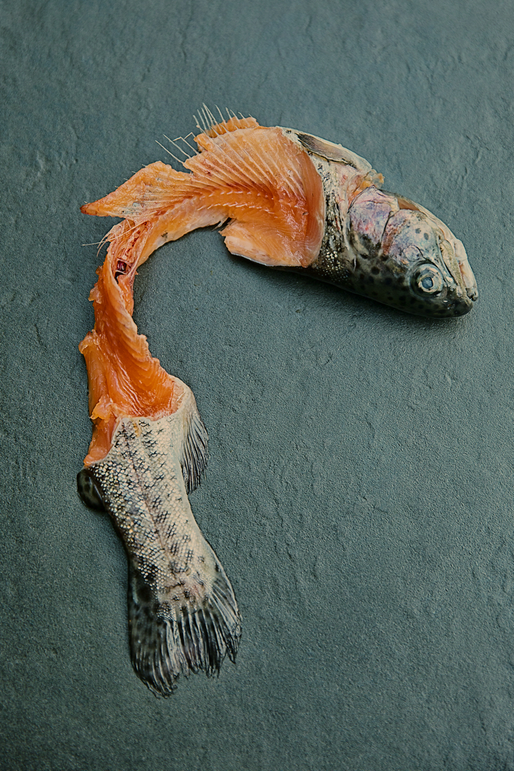 Gerard-Harten-Food-Photographer-Artists-Legends_54.jpg
