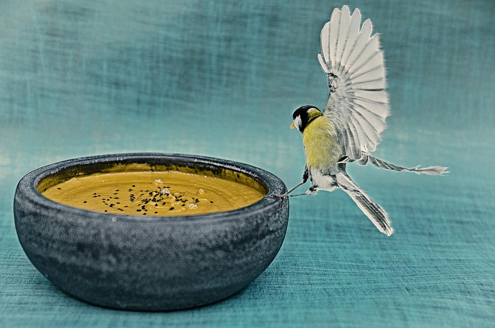 Gerard-Harten-Food-Photographer-Artists-Legends_55.jpg