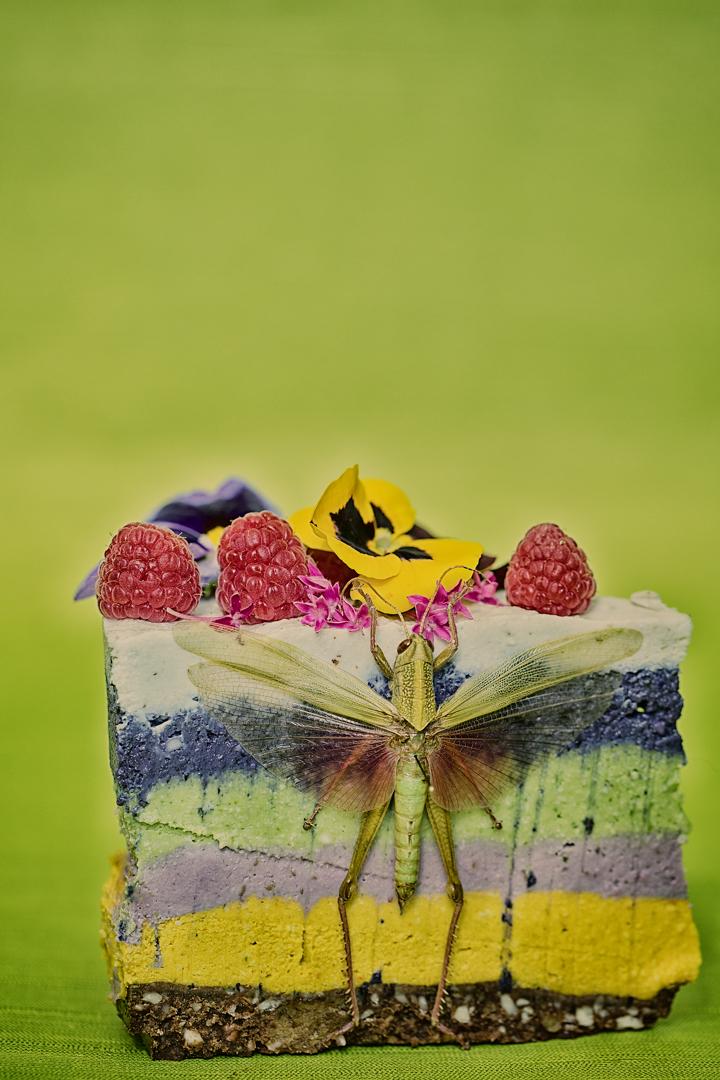 Gerard-Harten-Food-Photographer-Artists-Legends_60.jpg