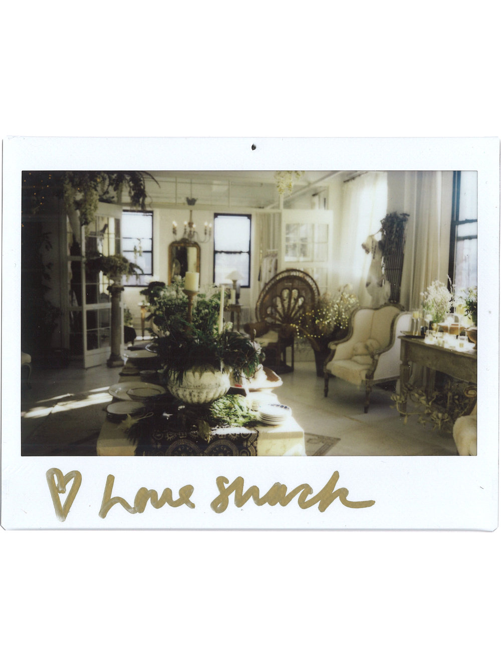 showroom polaroid.jpg