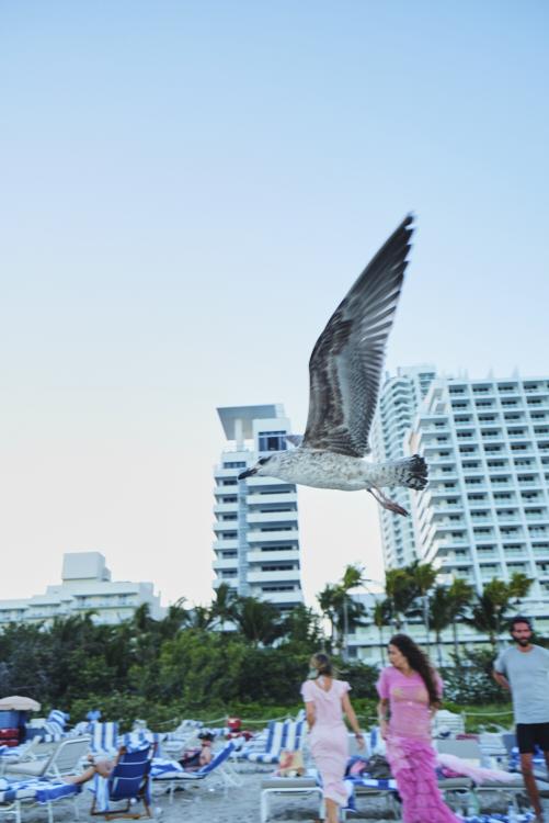 180216_LSF_Miami_581.jpg