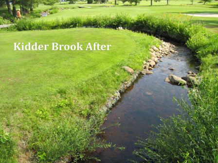 Kidder Brook After_tag_web.jpg