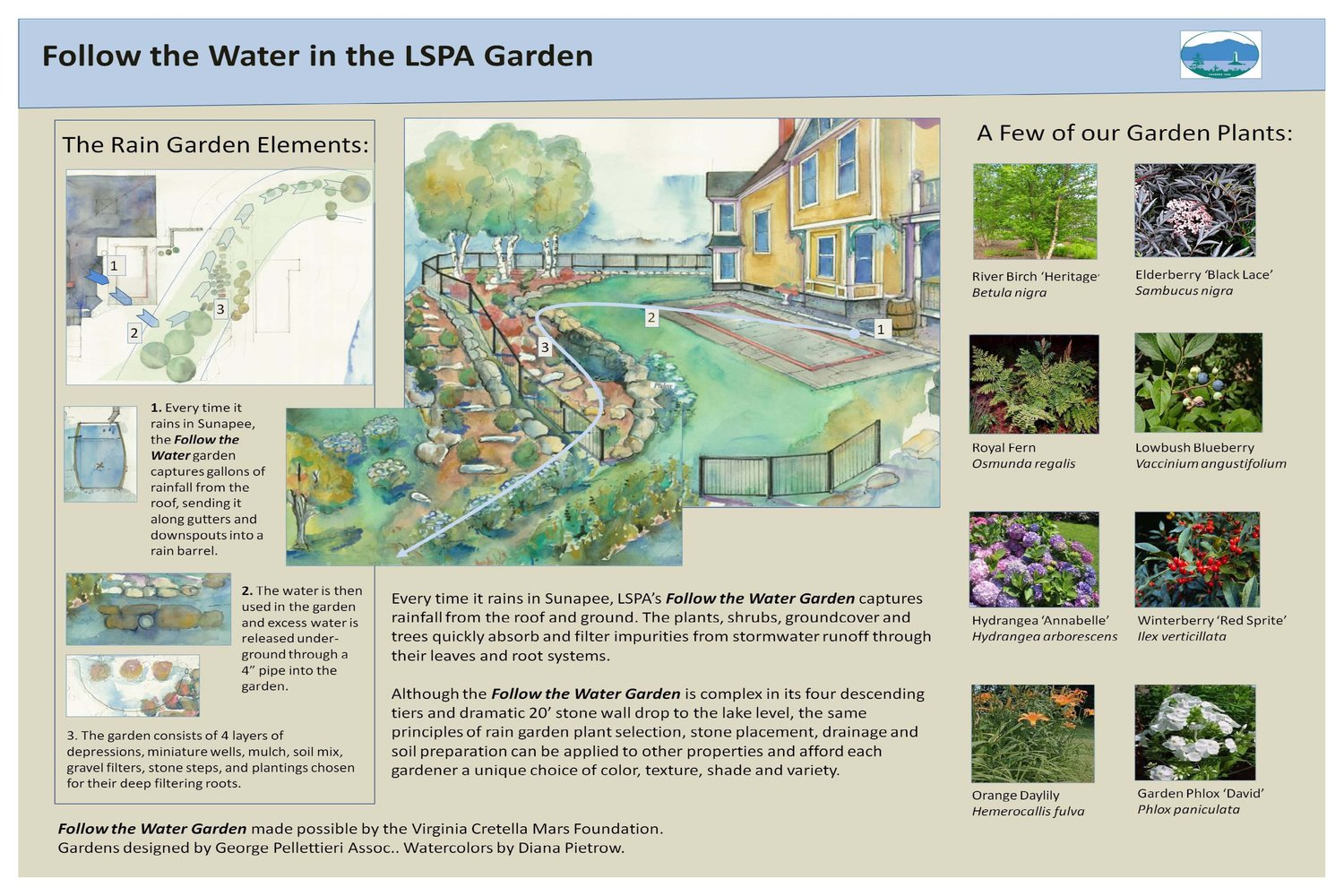 Your Yard and Clean Water — LSPA Rain Garden Design Steps Plans on burn pit design plans, raised bed vegetable garden design plans, large garden layout plans, patio garden design plans, border garden design plans, cottage garden design plans, fountain design plans, rose garden design plans, container garden design plans, butterfly garden design plans, residential landscape design plans, small garden design plans, roof garden design plans, community garden design plans, perennial garden design plans, tropical garden design plans, prairie garden design plans, design your own garden plans, small wind turbine design plans, green roof design plans,