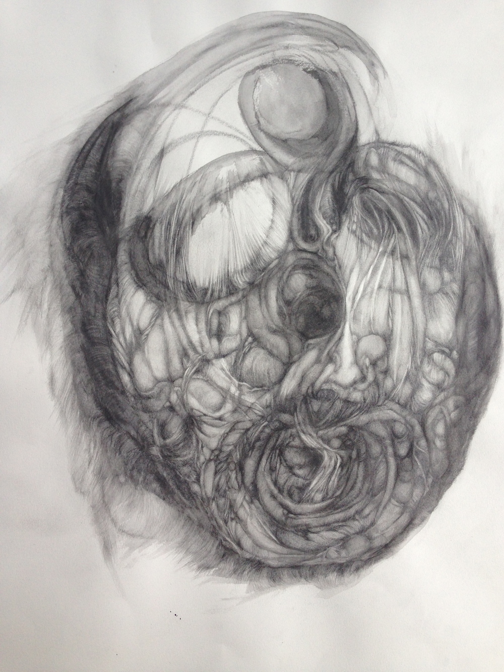 "Rainy Day Mask, 2014, graphite on paper, 26"" x 20"""