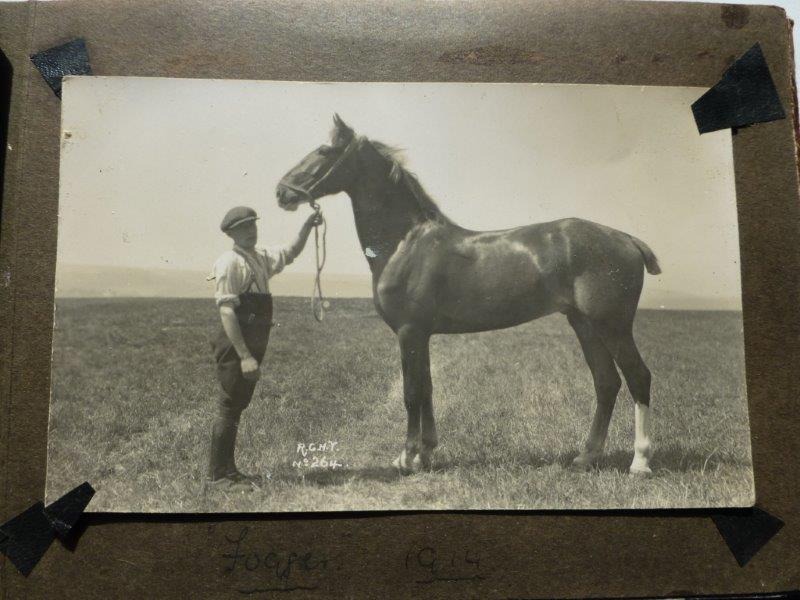His horse in 1914 'Fogger'